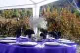 Columbia Gardens Wedding 2