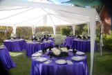 Columbia Gardens Wedding 3