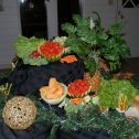 Function Catering - 4